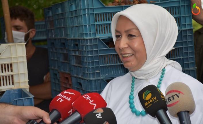 'Türkiye Cumhuriyeti tarihinde ilk kez TMO kuru kayısı alacak'