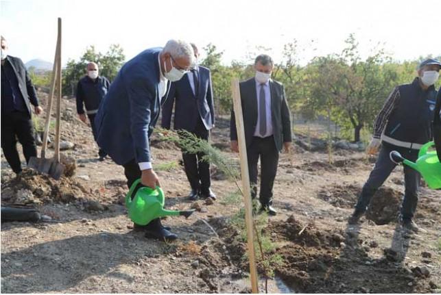 Battalgazi Belediyesi Malatya'yı Yeşillendiriyor