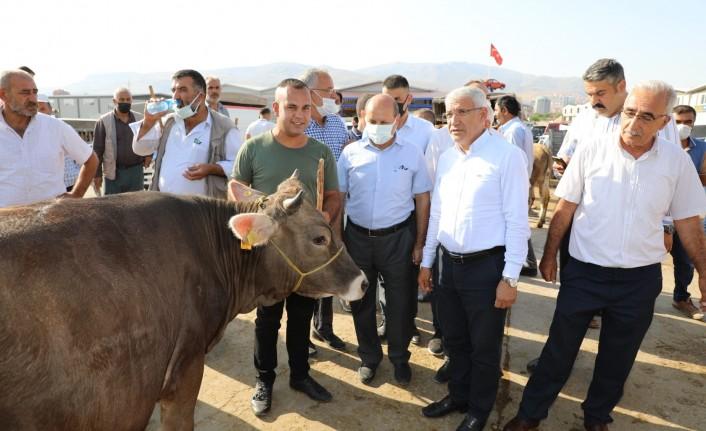 Başkan Gürkan Ve Başkan Güder, Canlı Hayvan Pazarı'nı Ziyaret Etti