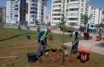 Yeşilyurt Belediyesi Parkların Temizliğine ve Bakımına Önem Veriyor