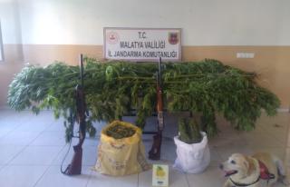 Battalgazi'de Uyuşturucu Operasyonu
