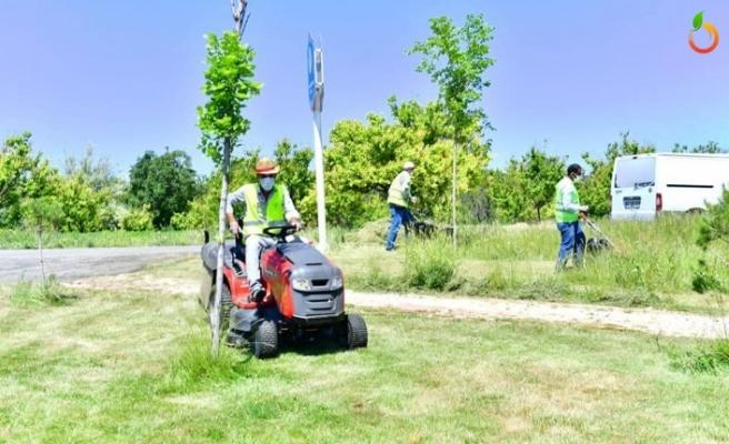 Parklarda yenileme ve düzenleme çalışması sürüyor