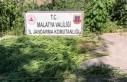 Malatya'da 67 kök kenevir ve 2 kilo kubar esrar...