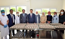 Malatya Kayısı Araştırma Enstitüsü TarafındanGlutensiz Bisküvi Üretildi