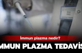 İmmün plazma nedir 'İmmün plazma' tedavisi...