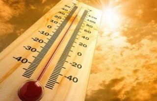 Meteoroloji'den Malatya İçin Sıcaklık Uyarısı