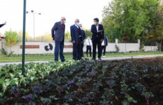 Başkan Güder,'Ürettiğimiz Bitkileri Başka...
