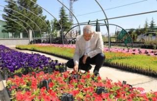 52 Bin Çiçek Ve Süs Bitkisi Toprakla Buluştu