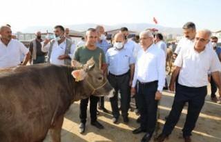 Başkan Gürkan Ve Başkan Güder, Canlı Hayvan Pazarı'nı...