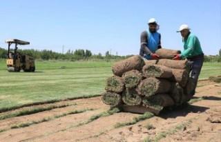 Daha Yeşil Bir Battalgazi'nin Çalışmaları Sürüyor