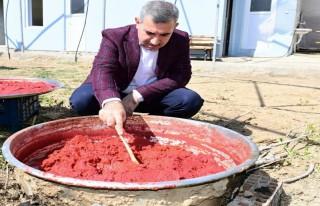 Başkan Çınar, sera alanını gezdi
