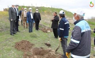 Battalgazi'de 750 fidan toprakla buluştu