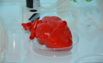 Türk bilim insanları kök hücre ve 3D biyo-yazıcı ile 'kalp' üretecek