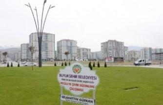 Büyükşehir Belediyesi Çiftlik Caddesinde 220 Fidan Dikti