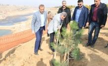 '11 Milyon Ağaç, Geleceğe Bırakılan En Büyük Mirastır'